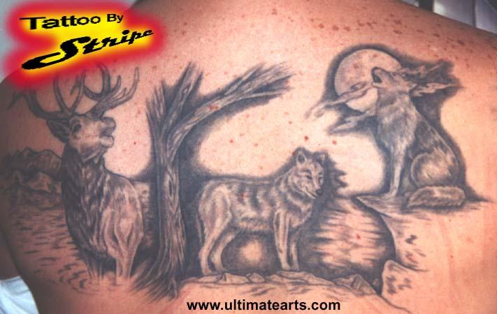 question tattoo laws