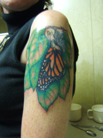 butterfly coming out of a cocoon tattoo picture