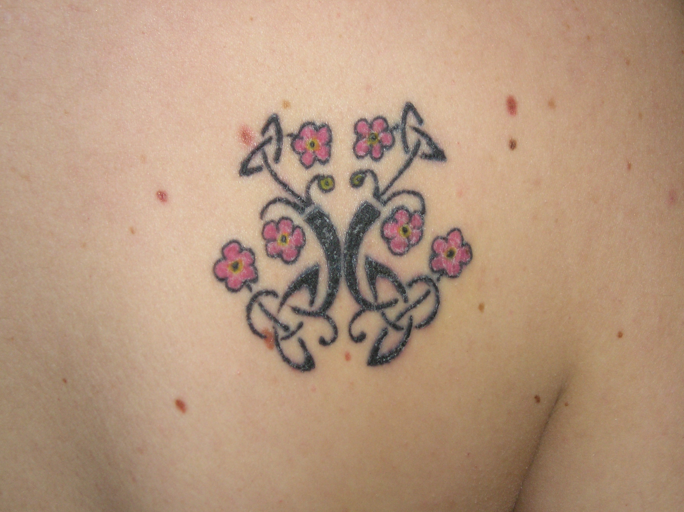 Celtic Tree of Life Tattoo title=