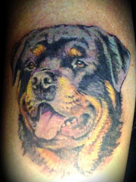 rottweiler tattoo personal picture picture. Black Bedroom Furniture Sets. Home Design Ideas