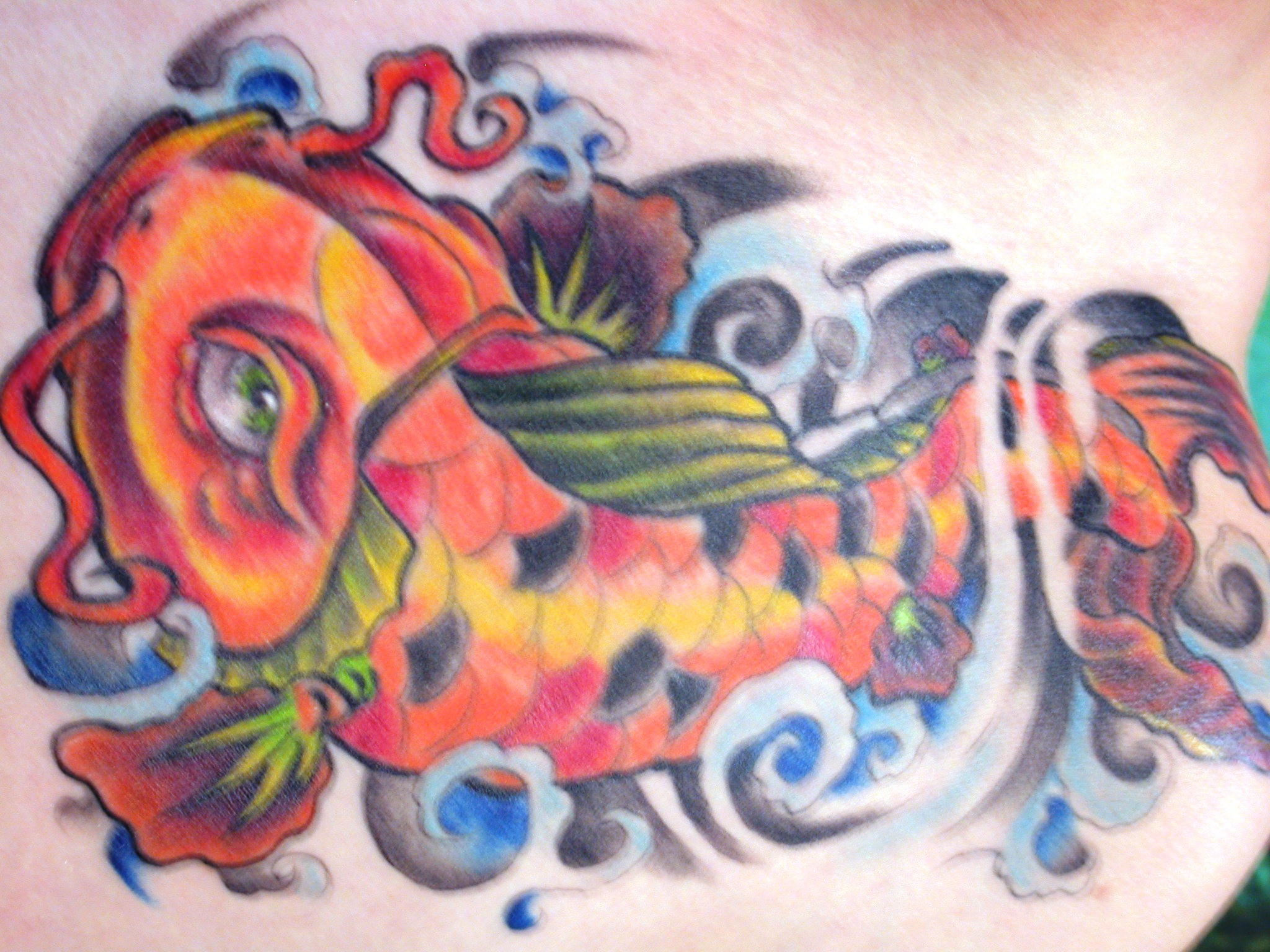 Koi Fish By Digger Dan Tattoo