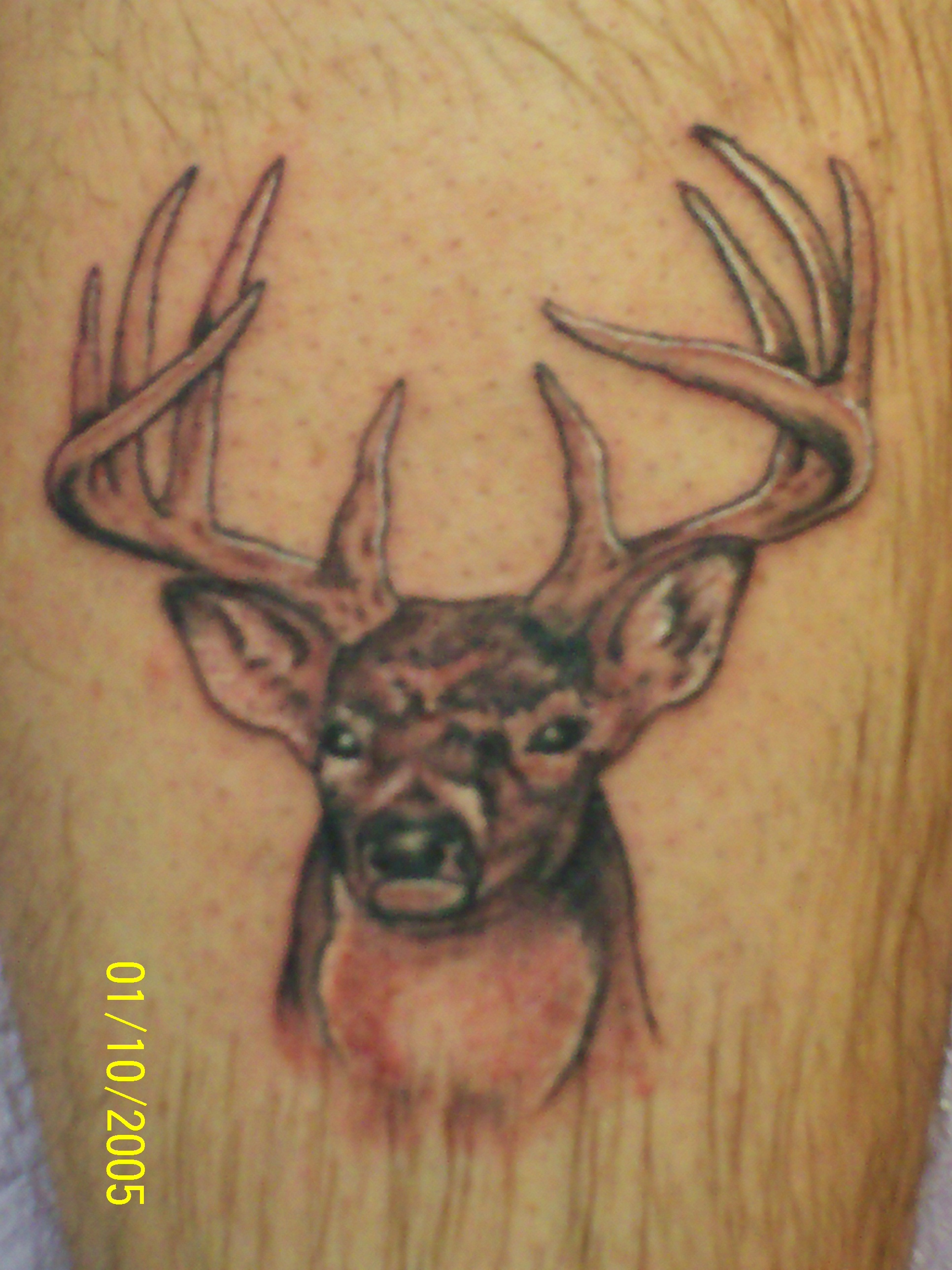 deer head tattoo for girls wwwimgkidcom the image