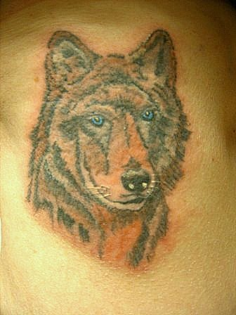 timberwolf tattoo picture. Black Bedroom Furniture Sets. Home Design Ideas