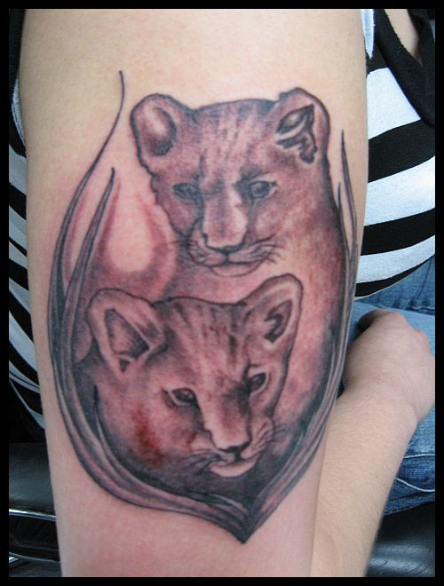 Lion baby cubs tattoo picture for Lion and cub tattoo