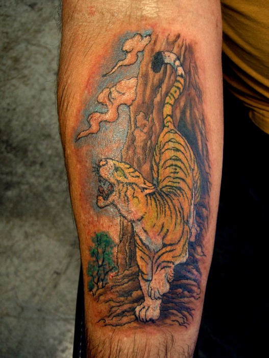 Asian Tiger on a Mountain