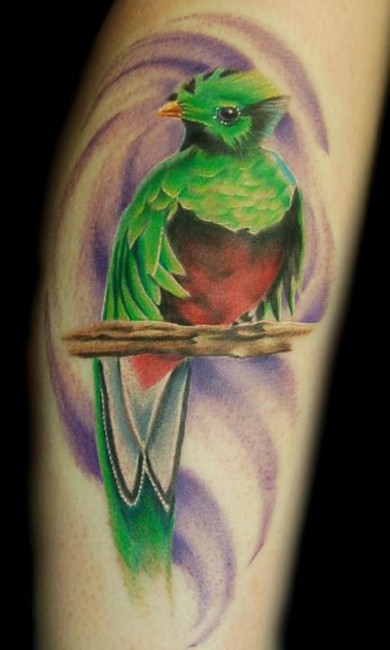 quetzal tattoo picture