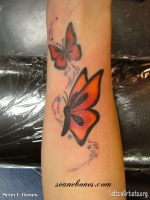 Butterfly arm3