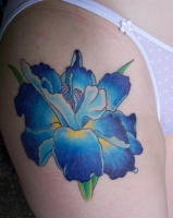 Tattoo Pictures of iris