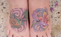 Dragonfly and butterfly feet