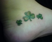 Molly's Shamrocks