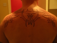 upper back 1st session