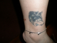 Wolf Anklet 1