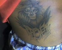 Stomach Peice Lion