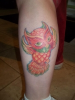 healed pic of owl tattoo i did, 1 month later